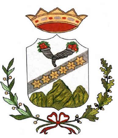Il Gonfalone - Comune di San Felice a Cancello
